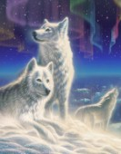 Arctic Wolves (Variant 1)