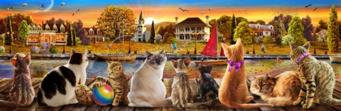 Cats on the Quay Panoramic