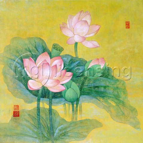 Dream lotus