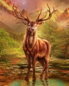 River Stag