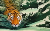 Tiger waters
