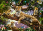 Tree Top Leopard Family
