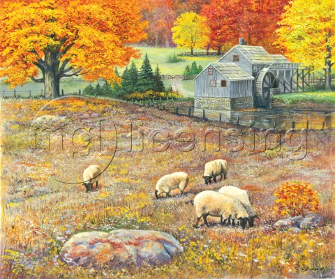 Autumn pasture  sheep