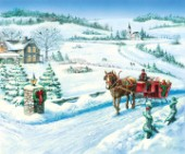 Festive ride - horse carriage