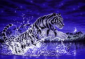 Power of life - white tiger