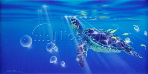 To the light  sea turtle