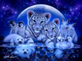 White Tiger Cubs, Bunnies, Baby Seals, Penguins-Chicks-Shining Lives