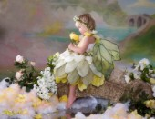 Yellow rose fairy