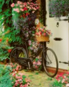 Bicycle & Flowers (g104)