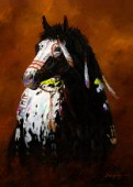 Sioux war pony (NPI 19002)