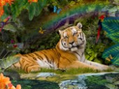 Enchanted Tigress