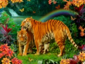 Tiger Love Tropical