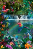 Waterfall Parrots