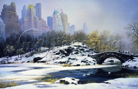 Central Park NYC Winter