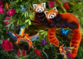 Two red pandas surrounded by butterflies in fantasy wood.