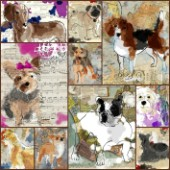 Painted Dog Multipic 1
