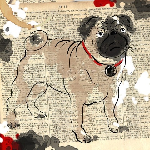 The Painted Pug