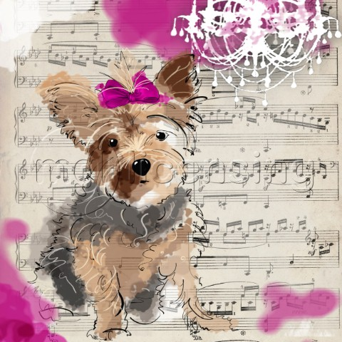 The Painted Yorkie