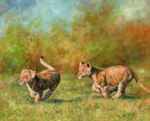 Pair iof Lion Cubs running. Oil on canvas.