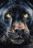 Oil painting on canvas of a Black panther