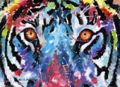 Tiger eyes in multicolour. Oil on canvas