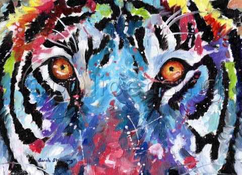 Tiger eyes in multicolour Oil on canvas