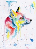 Multicolour Fox