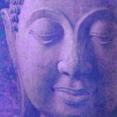 purple buddha gold (Variant 2)