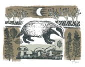 Moonlit Badger