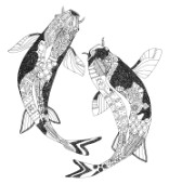 illustrated koi black white outline