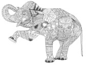 asian elephant (variant 1).jpg