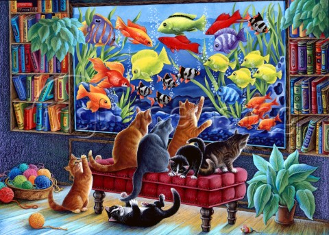 Kittens and Fish Tank
