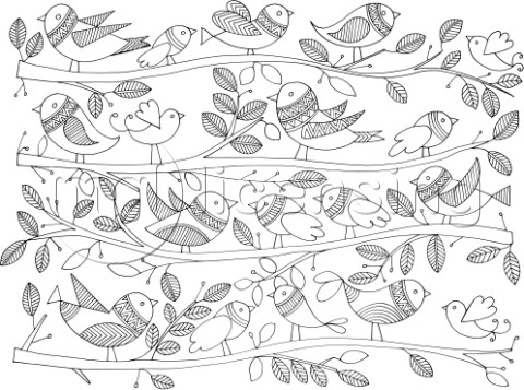 NeetiPatternBirds on Branches