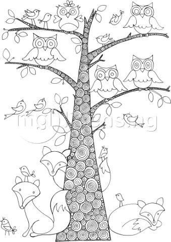 Neeti Fox Owls Birds and Tree