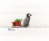 Penguin and Sled