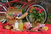 1662-Red Bicycle-Picnic