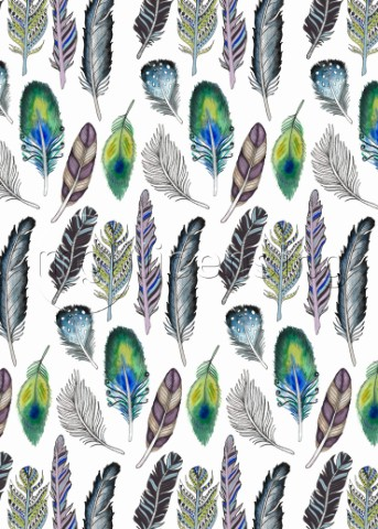 FEATHERS ILLUSTRATIVE FUNKY BOHEMIAN REPEAT ON WHITEjpg
