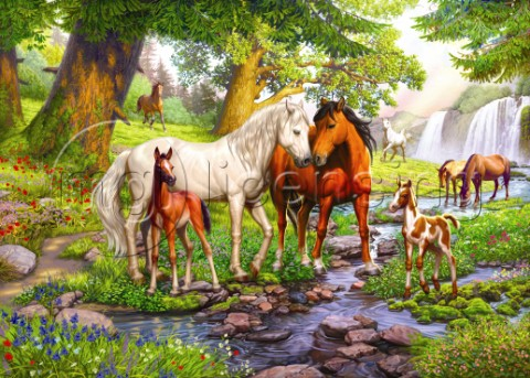 Horses with Foals by the Sream