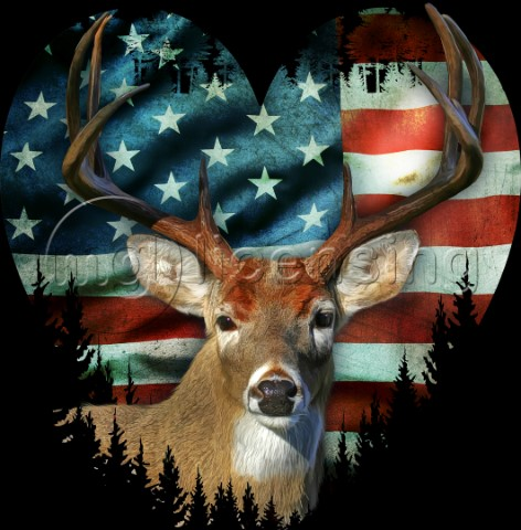USA Stag variant 1
